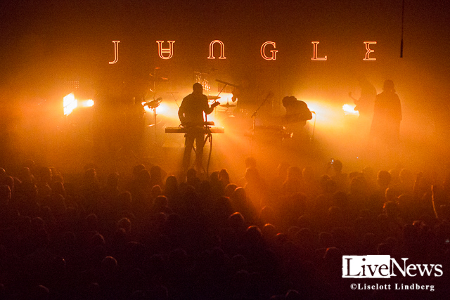 Jungle_Debaser_Medis_2015_6