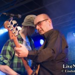 Docenterna This_Is_Hultsfred_2014_02
